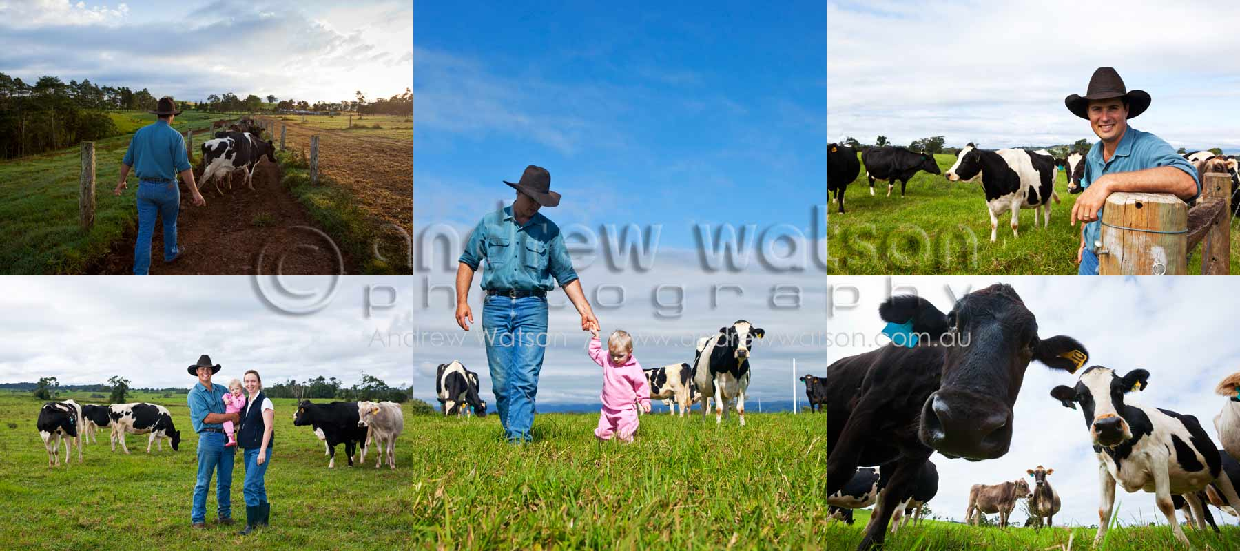 Lifestyle Photography - Images of dairy farming family on the Atherton Tablelands, North Queensland