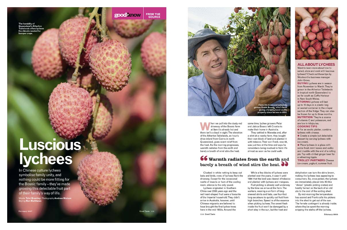 Magazine Photography - Tablelands lychee farming.  Inside story for Good Taste magazine.