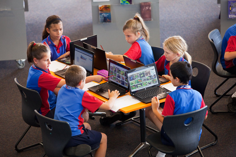 A group of young students researching on laptop computers in the library