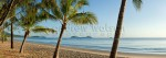 View through coconut palms at Kewarra BeachCairns, North QueenslandImage available for licensing or as a fine-art print... please enquire