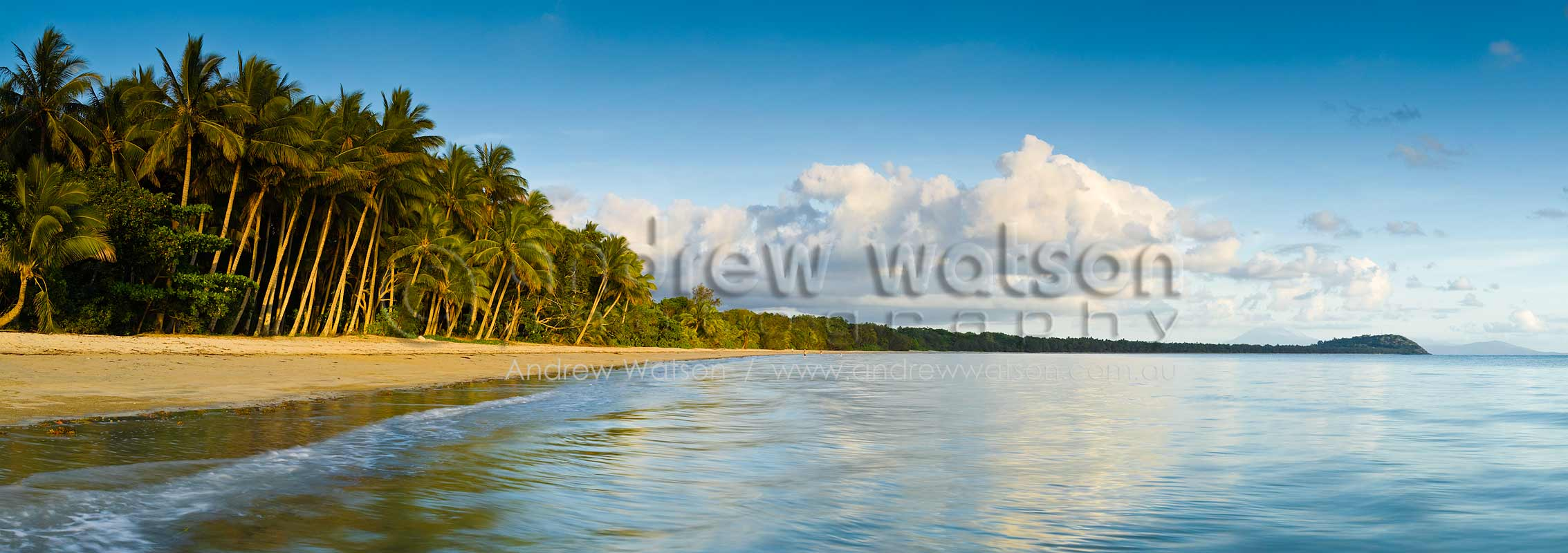 View along Four Mile Beach at dawnPort Douglas, North QueenslandImage available for licensing or as a fine-art print... please enquire