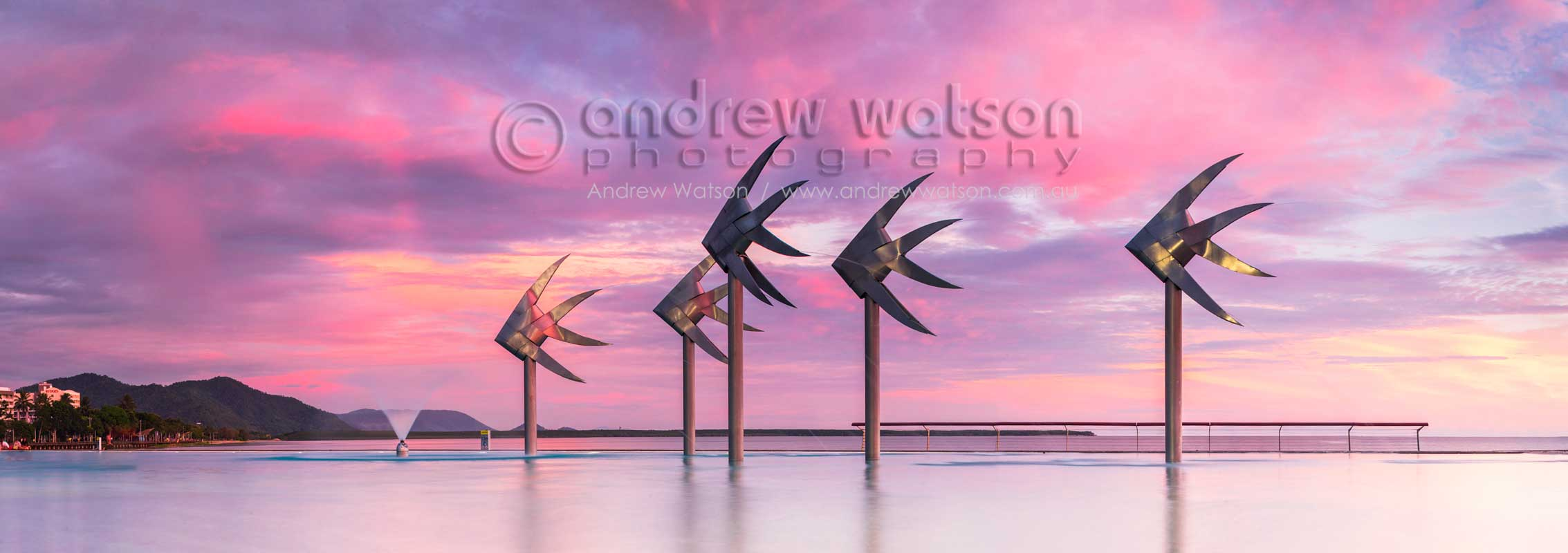 Pink sunrise hues over the fish sculpture at the Esplanade LagoonCairns, North QueenslandImage available for licensing or as a fine-art print... please enquire
