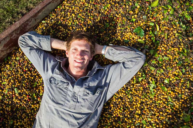 Portrait of male coffee farm manager lying on a bed of coffee beans