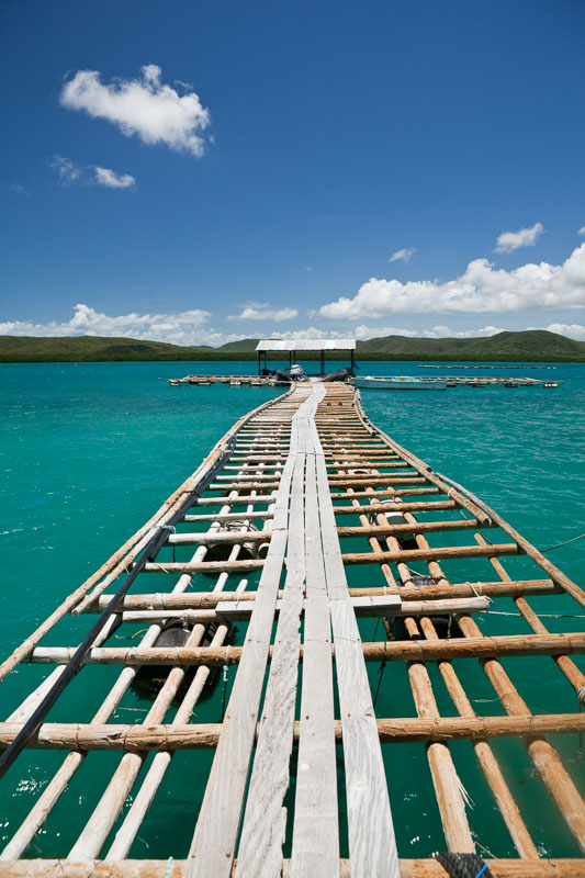 A pearling jetty extends into the turquoise water around Friday Island, Torres Strait