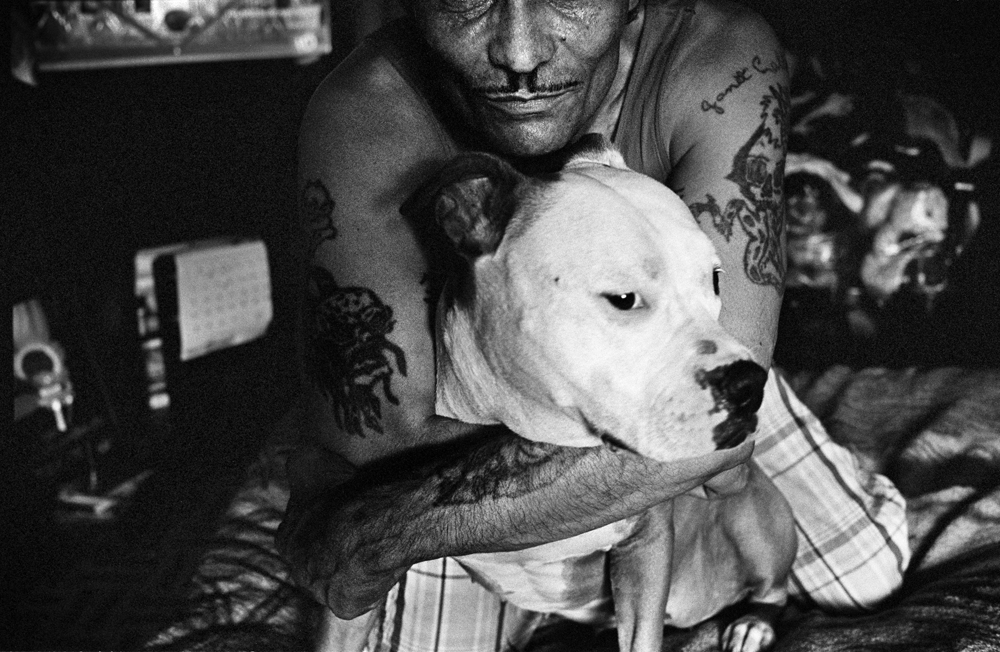 BRONX, NEW YORK - JUNE 27: Luis San Oguel and his pit bull China, in his apartment in the University Heights neighborhood of the Bronx, June 27, 2013.