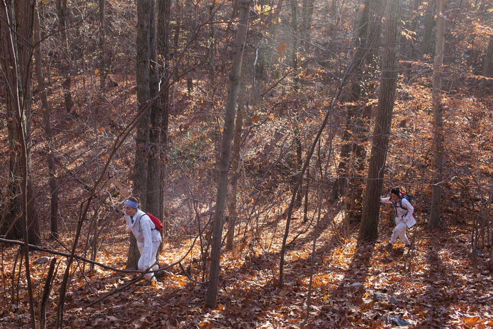 Project assistants at the Cary Institute of Ecosystem Studies check small animal traps in Millbrook, New York on November 4, 2016. Photo by Stephen Reiss for NPR.