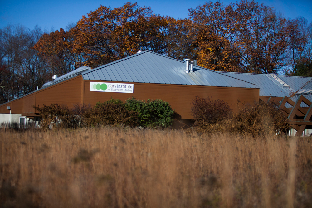 The Cary Institute of Ecosystem Studies in Millbrook, New York on November 4, 2016. Photo by Stephen Reiss for NPR.