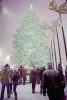 Heavy snow and high winds didn't stop many tourists from seeing the Christmas tree at Rockefeller Center on Dec. 19, 2009.