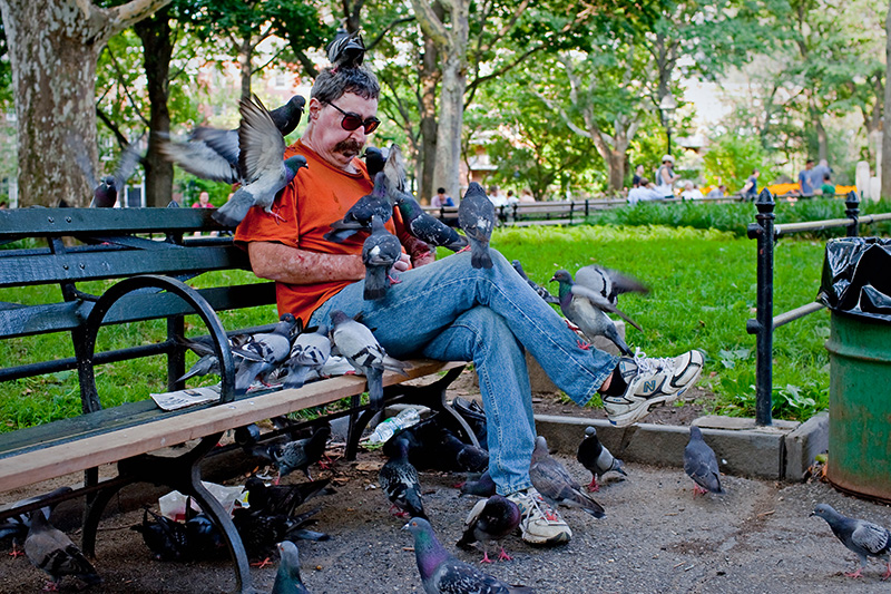 Paul, {quote}The Birdman{quote} feeds pigeons in Washington Square Park on July 30, 2009.  Paul, who is in the park every day, feeds the pigeons because he loves their company.