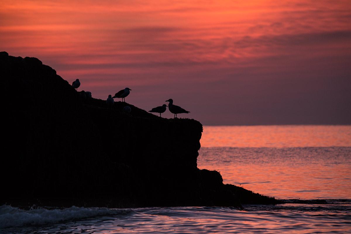 Acadia_Maine_11