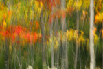 Acadia_National_Park_2013_2014_014