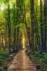 Acadia_National_Park_2013_2014_030