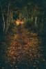 Acadia_National_Park_2013_2014_040