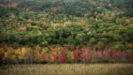 Acadia_National_Park_2013_2014_046