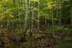 Acadia_National_Park_2013_2014_049