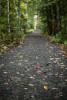 Acadia_National_Park_2013_2014_052