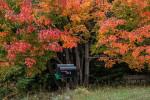 Acadia_National_Park_2013_2014_061