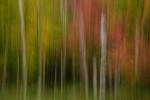 Acadia_National_Park_2013_2014_069