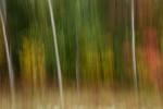Acadia_National_Park_2013_2014_102