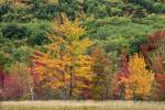 Acadia_National_Park_2013_2014_110