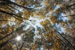 Acadia_National_Park_2013_2014_117