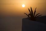 Best_of_greece_santorini_mykonos_naxos_091