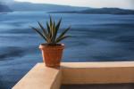 Best_of_greece_santorini_mykonos_naxos_104