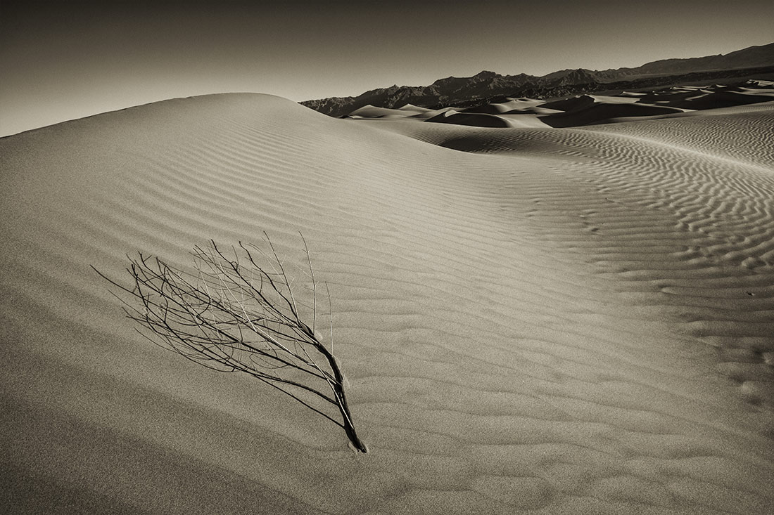 Death_Valley_2013-20