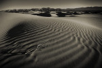 Death_Valley_2013-21