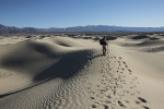 Death_Valley_2013-77