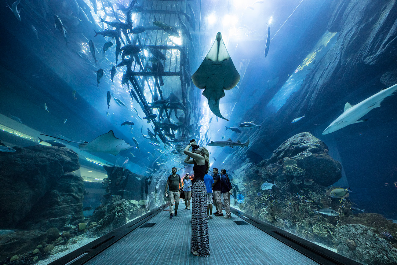 Holly in the Dubai Aquarium in the Dubai Mall