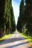 Italy_tuscany_florence_2017_workshops_150