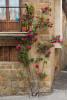 Italy_tuscany_florence_2017_workshops_170