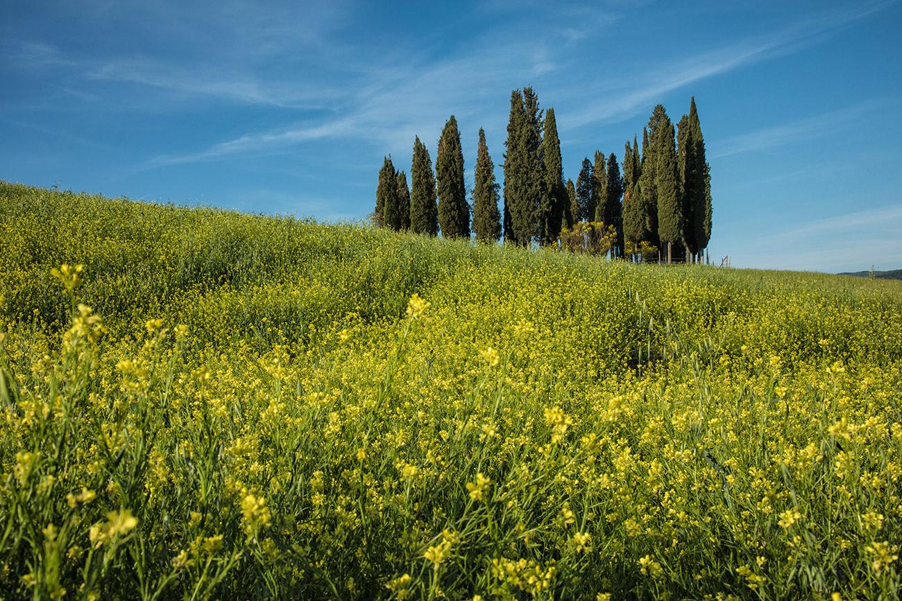 Italy_tuscany_florence_2017_workshops_281
