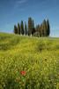 Italy_tuscany_florence_2017_workshops_283