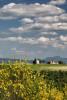 Italy_tuscany_florence_2017_workshops_287