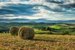 Italy_tuscany_florence_2017_workshops_47