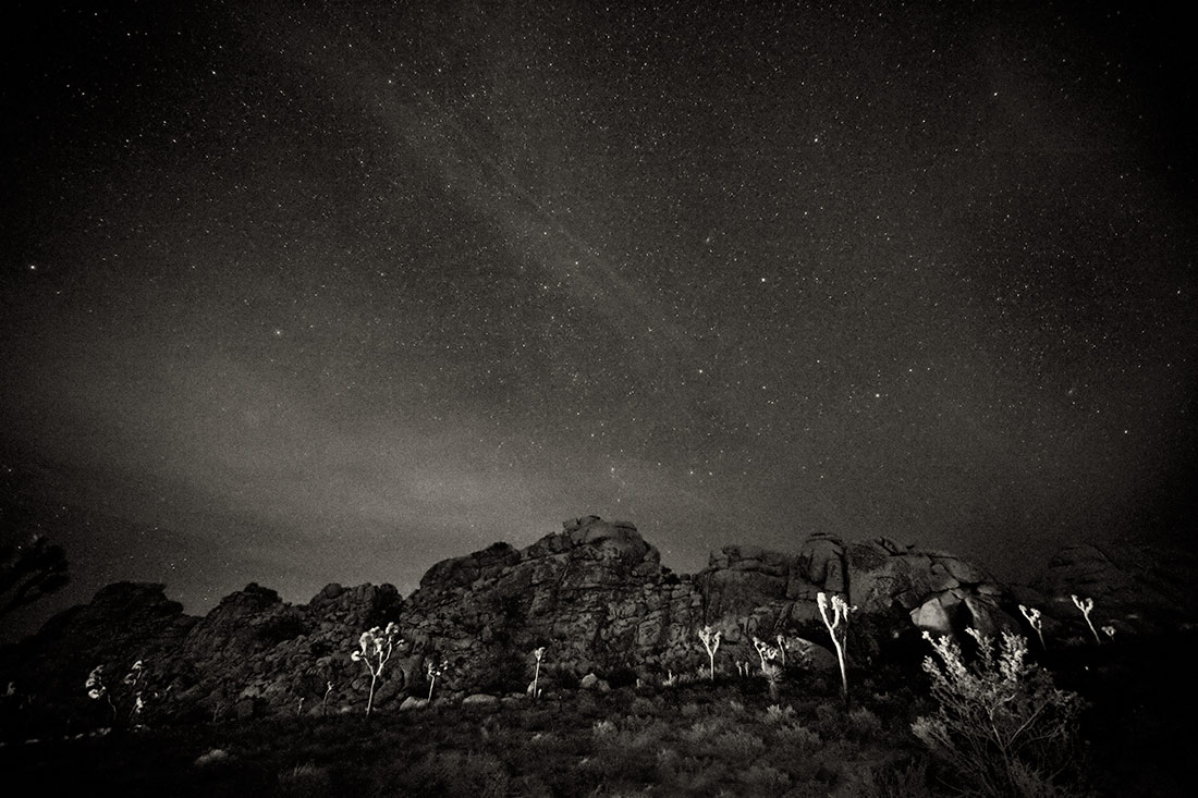 under the stars at joshua tree national park
