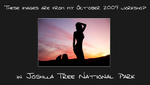 Joshua_tree_workshop_promo