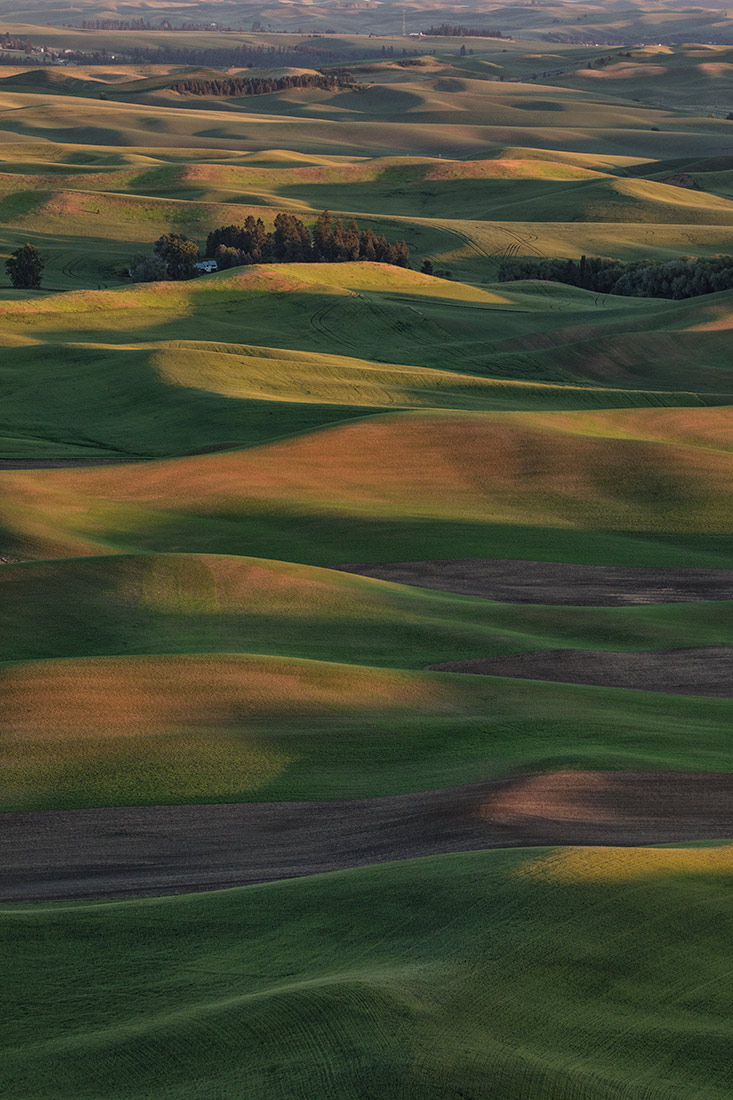 Palouse_2017_workshop_07
