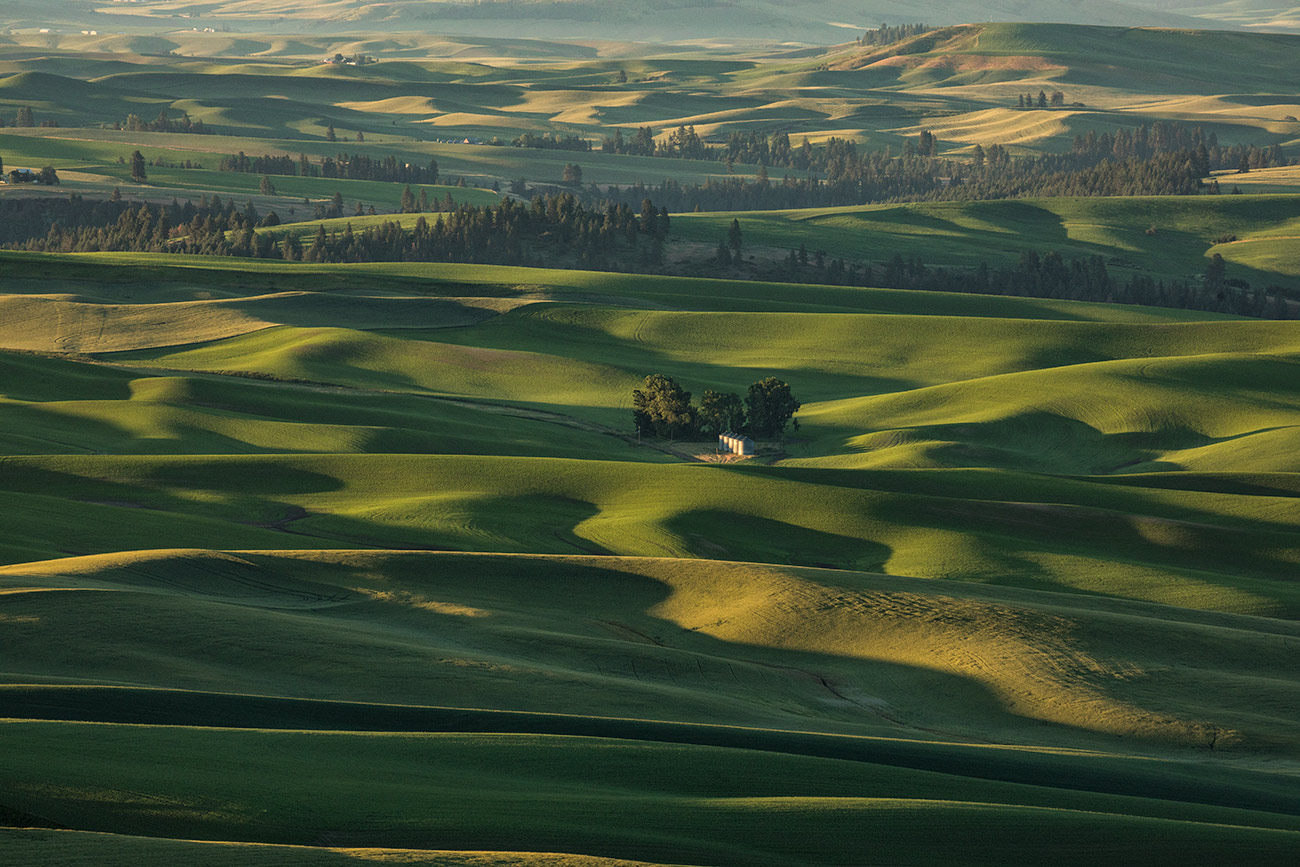 Palouse_2017_workshop_12