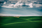 Palouse_best_photos_009