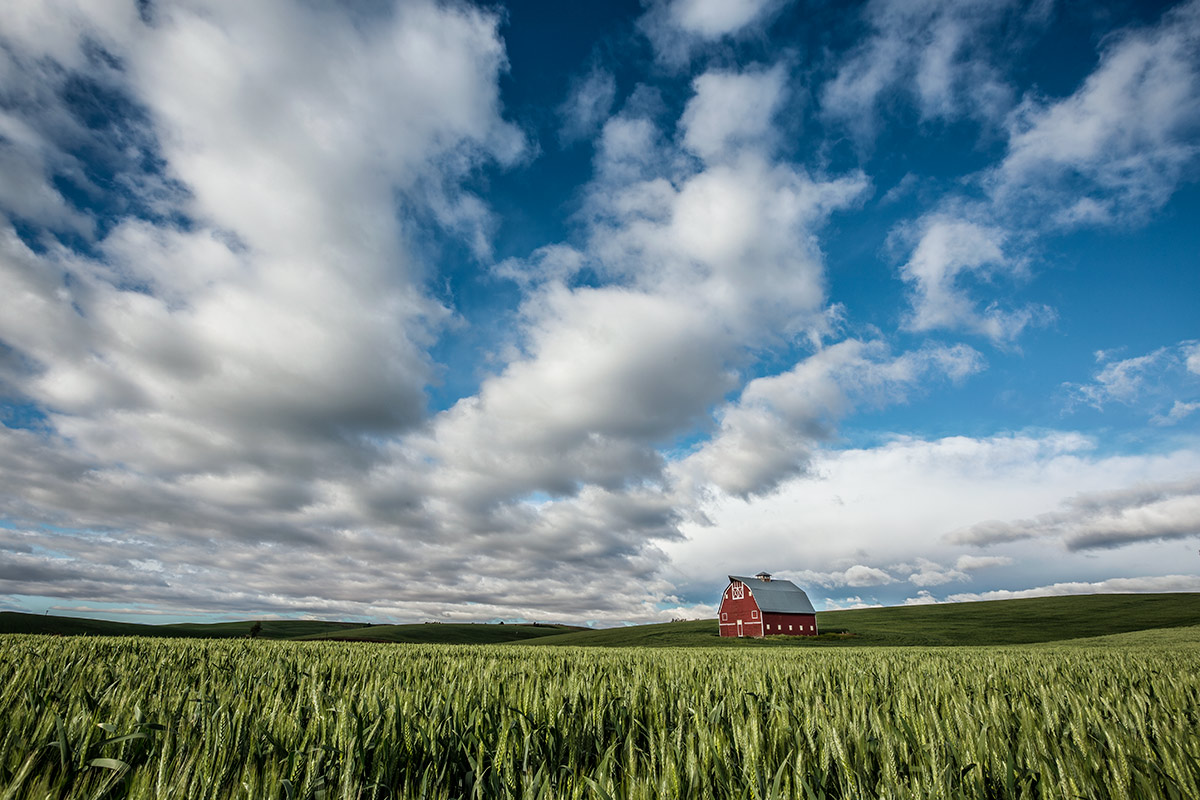 Palouse_best_photos_014