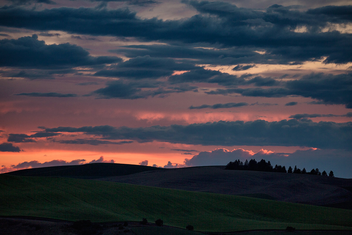 Palouse_best_photos_016