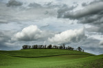 Palouse_best_photos_022
