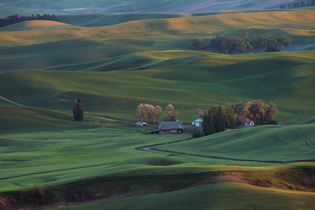 Palouse_best_photos_024