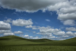 Palouse_best_photos_029