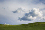 Palouse_best_photos_036