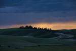 Palouse_best_photos_040
