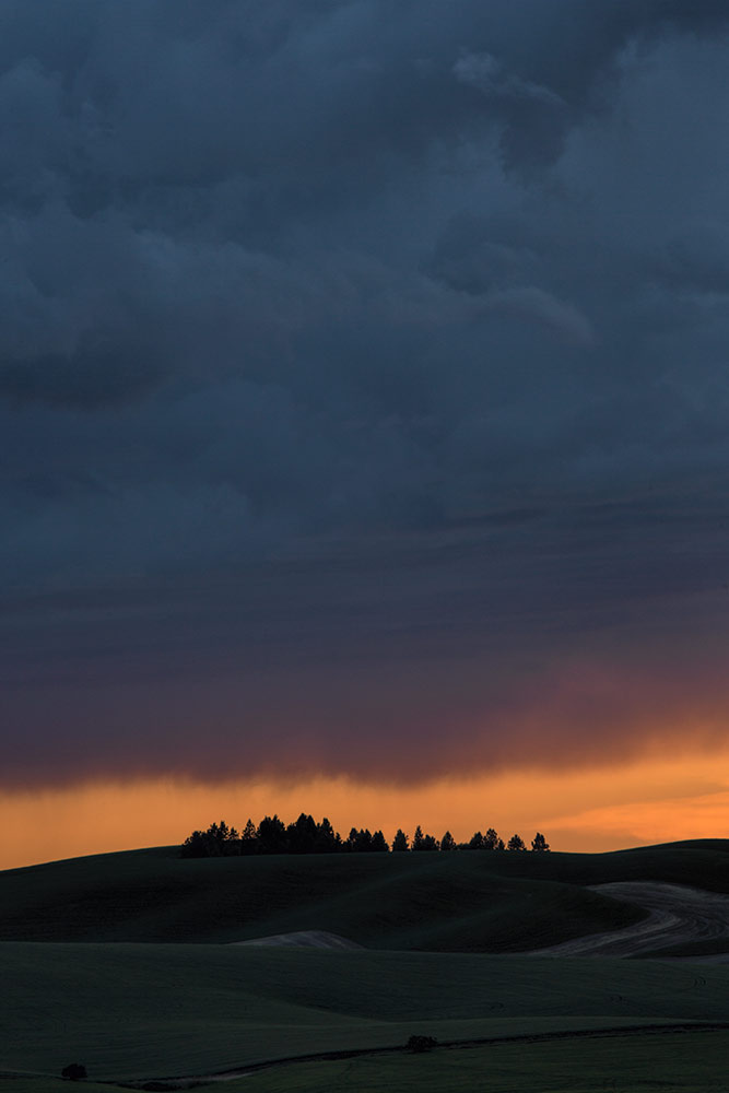 Palouse_best_photos_041